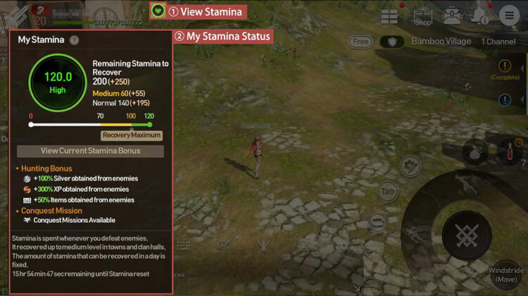 View Stamina Status and Effects