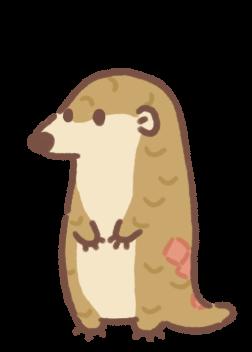 Pangolin Mama